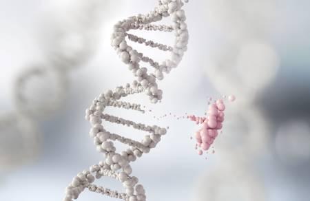 מולקולות מתוחכמות לטיפול ביולוגי